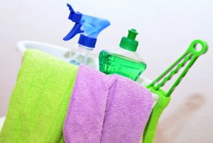 Effective Speed Cleaning Techniques For Everyone